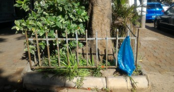 A plastic bag in Maputo. Photo: Zitamar News