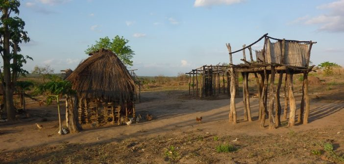 Mozambique government accused of breaking truce with Renamo shooting