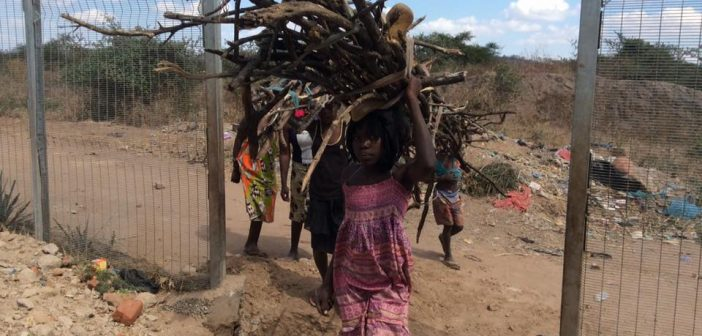 Locals carry firewood through gaps in Vale's fence in Moatize. Photo © Aparicio Jose / Jornal Malacha