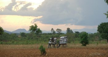 Charcoal being transported by bicycle in Malawi. Photo © Mike McKay on Flickr