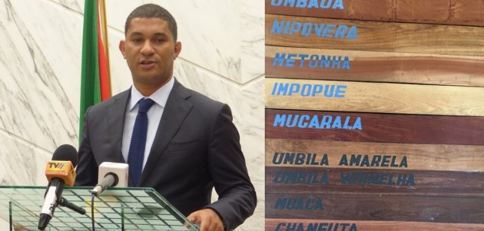 Left: Celso Correia, minister of land, environment, and rural development. Right: Wood produced on Obtala's concessions in Mozambique.