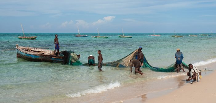 Fishermen holding a net between boat and beach at Pinda, Mozambique. Photo: Stig Nygaard, Wikimedia Commons