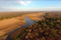 The Niassa National Reserve. Photo © Wildlife Conservation Society