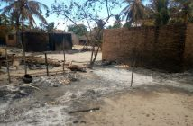 Burned houses and killed livestock following the attack on Naunde, Cabo Delgado, on 4 June. Photo © Amade Abubacar / Zitamar News