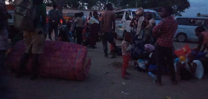 Montepuez receives new wave of refugees as attacks intensify